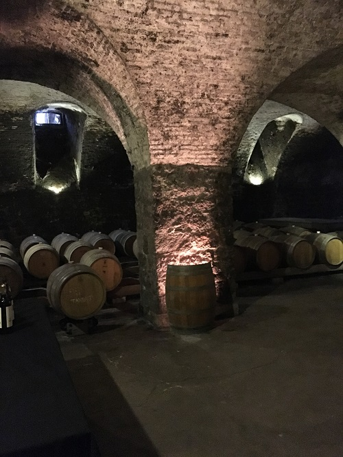 Cellar - 01