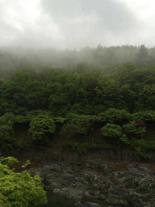 Hoshinoya View