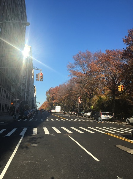 cpw-fall-afternoon