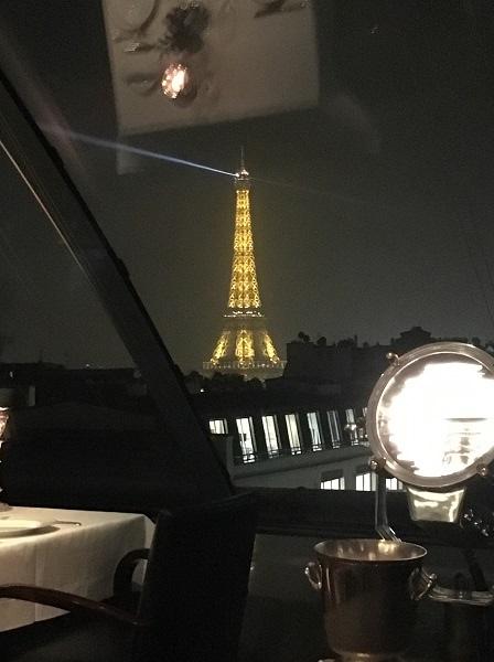loiseau-blanc-00-eiffel-tower