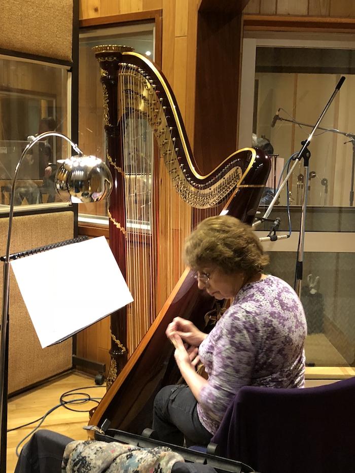 14 - Harpist.jpg